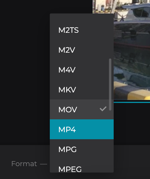 Select format to convert your cropped video