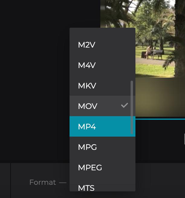 Change format of TikTok video