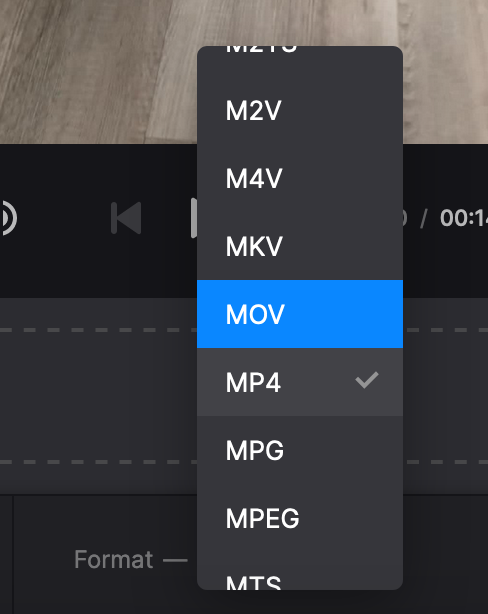 Change format of GIF with audio
