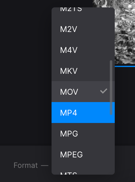 Change format of grayscale video