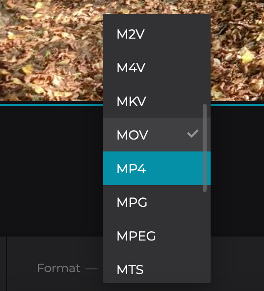 Change format of timelapse video