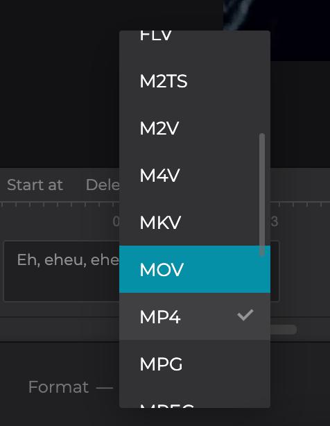 Change format of MKV with added subtitles