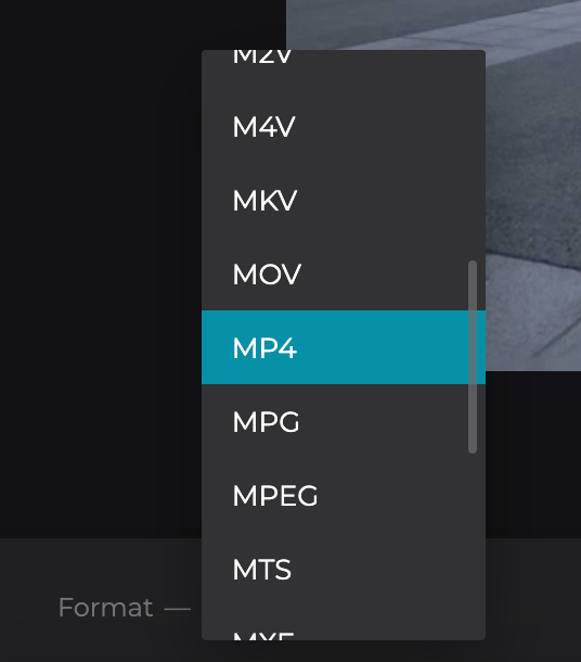 Change format of sped up Windows video