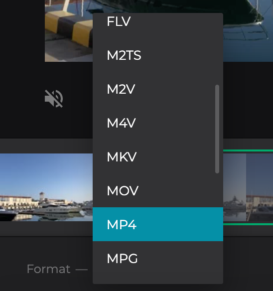Change format of trimmed video on Samsung