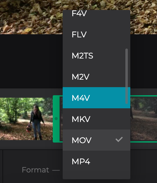 Change format of trimmed video on Windows