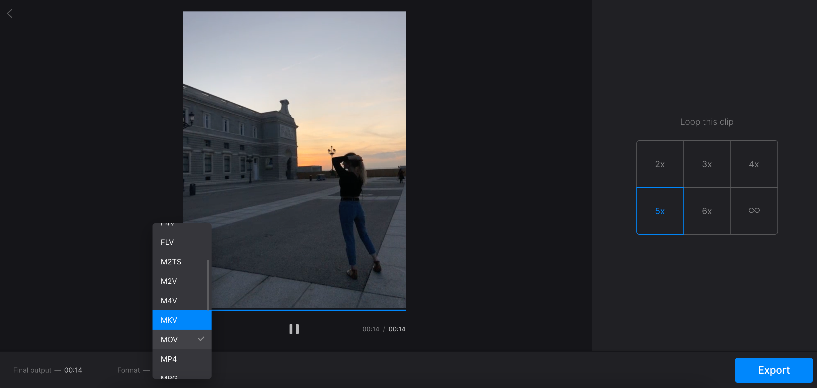 Convert video to not GIF format