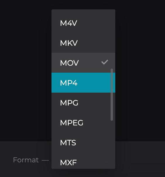 Change format of video with vignette