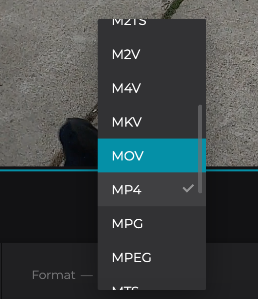 Change format of video without black bars