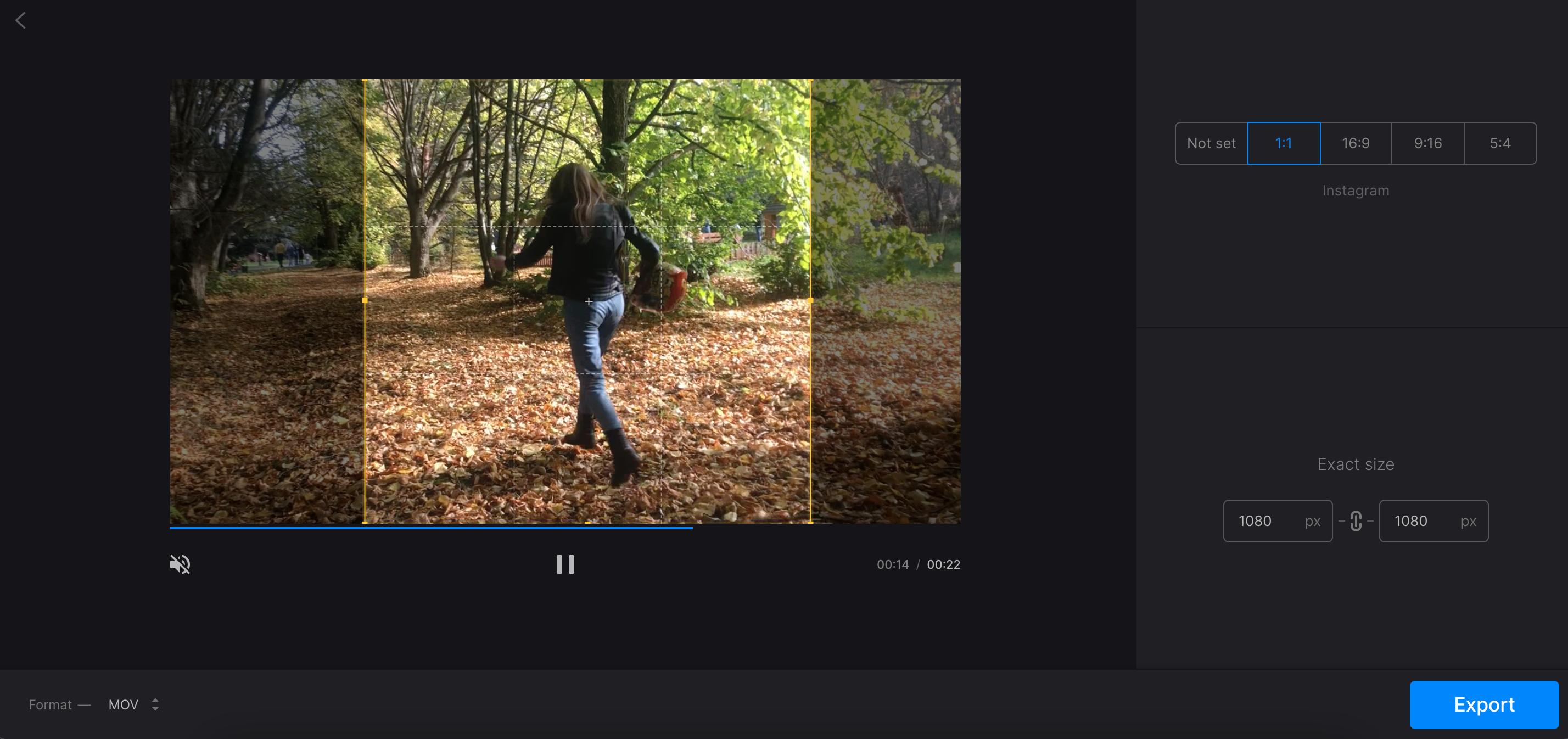 Adjust or crop video on Windows