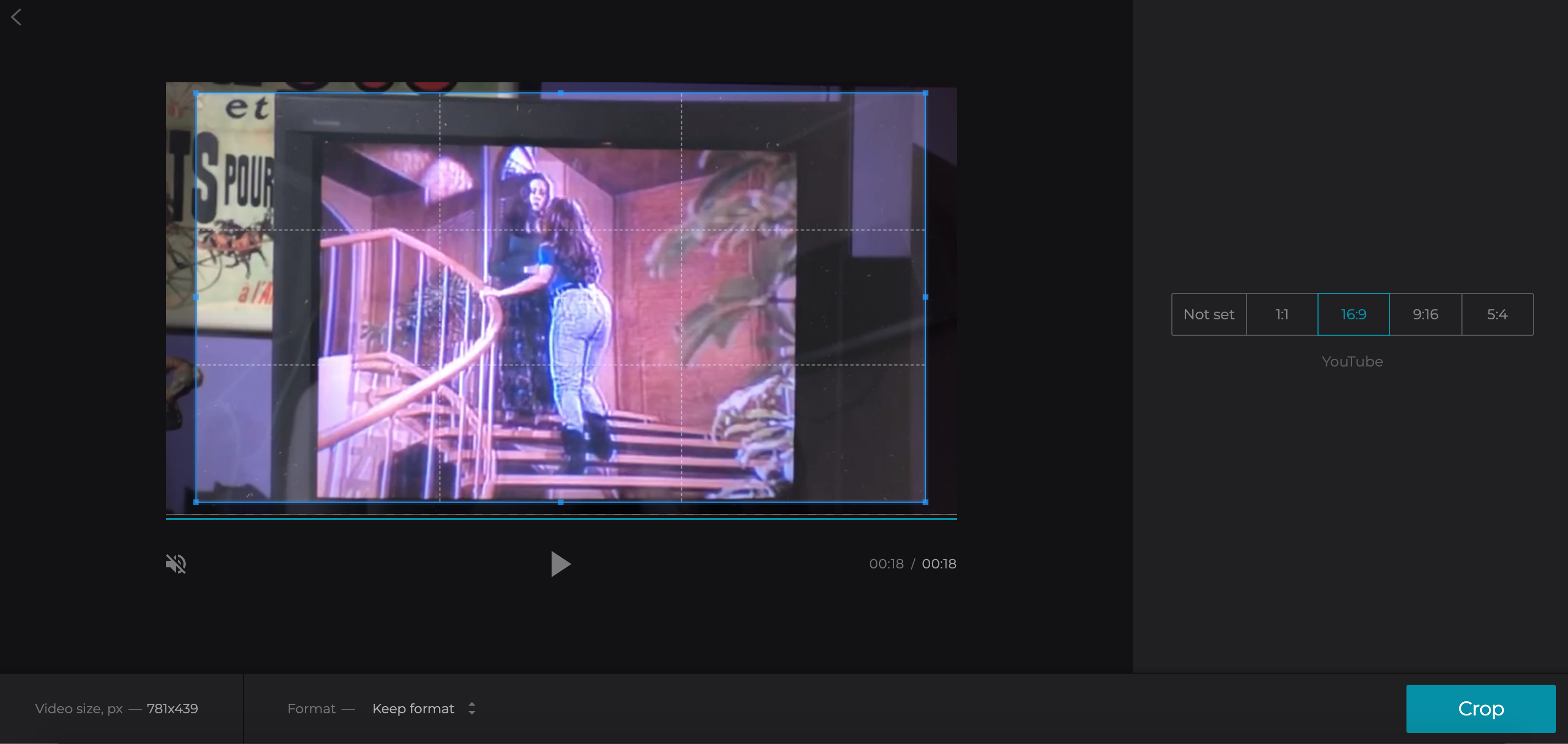Crop the YouTube video by selecting the aspect ratio