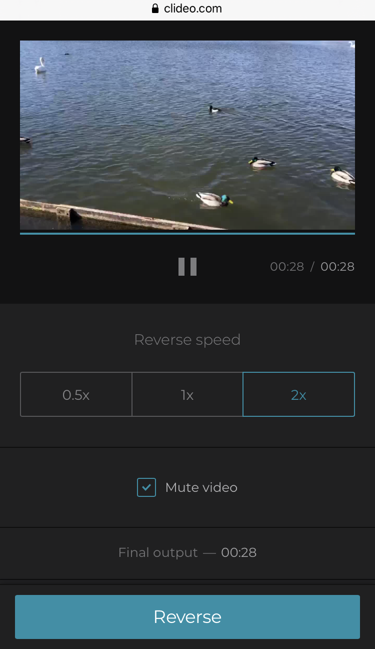Reverse video on iPhone with one click