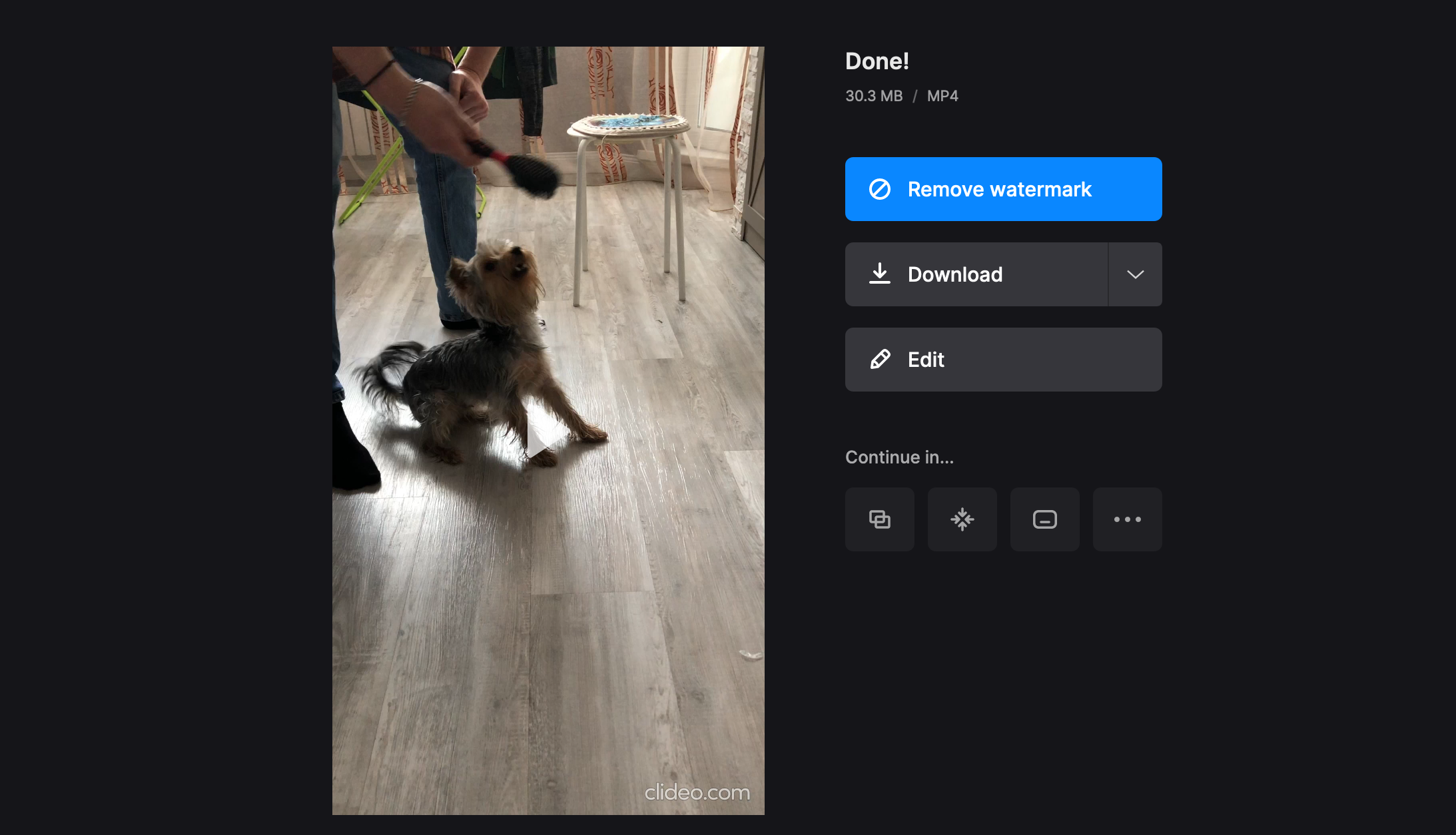 Download GIF with audio