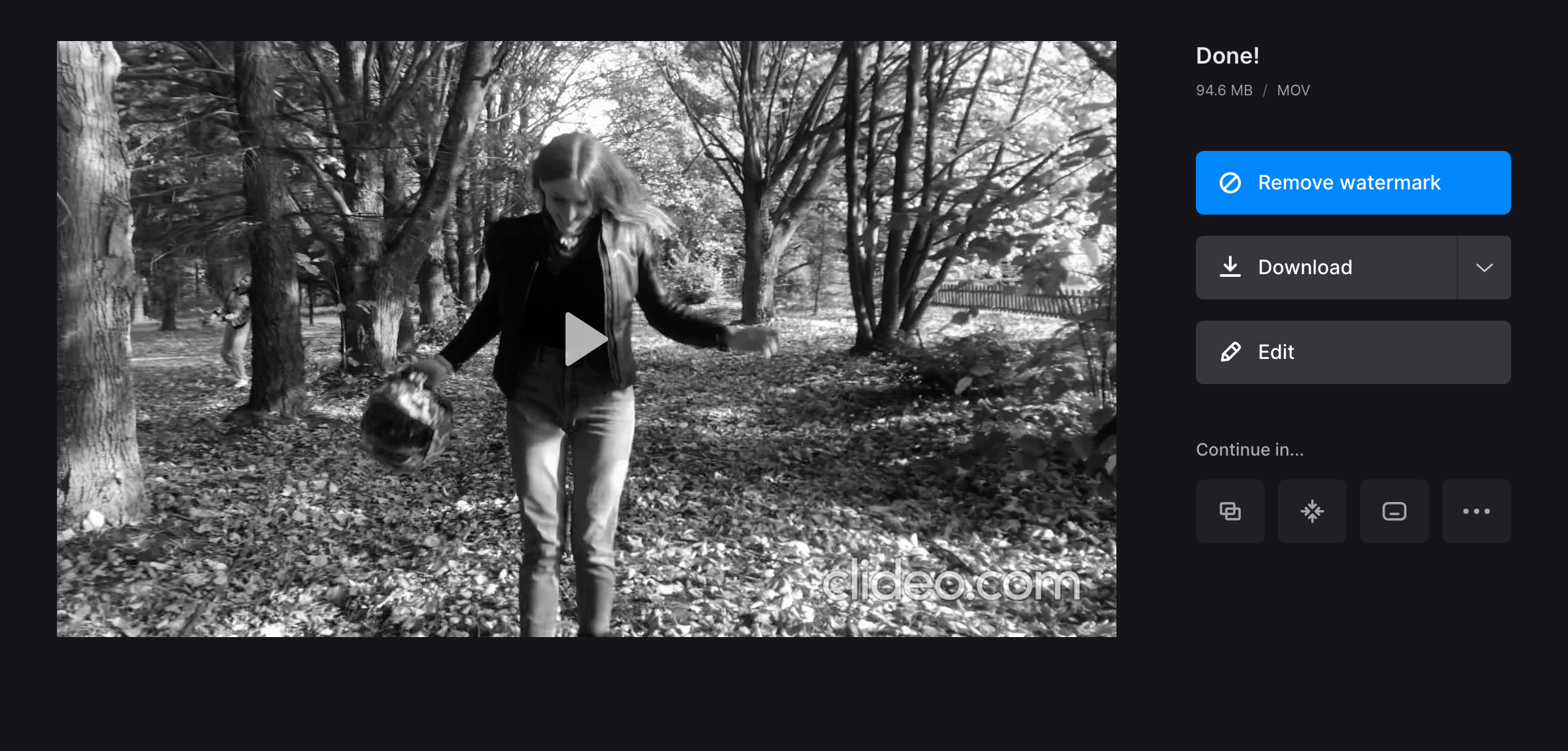 Download grayscale video