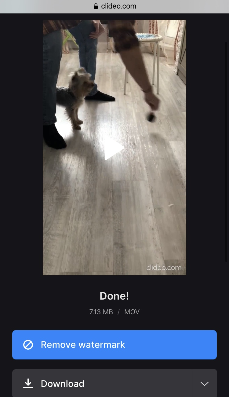 Download reversed TikTok video with Clideo